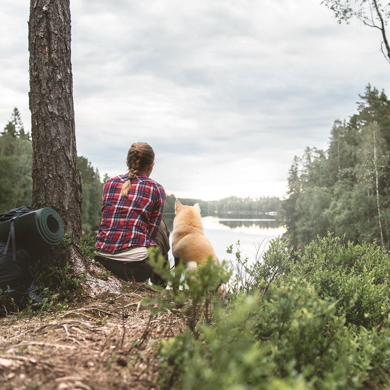 Sommarhälsningar från Skogspartner